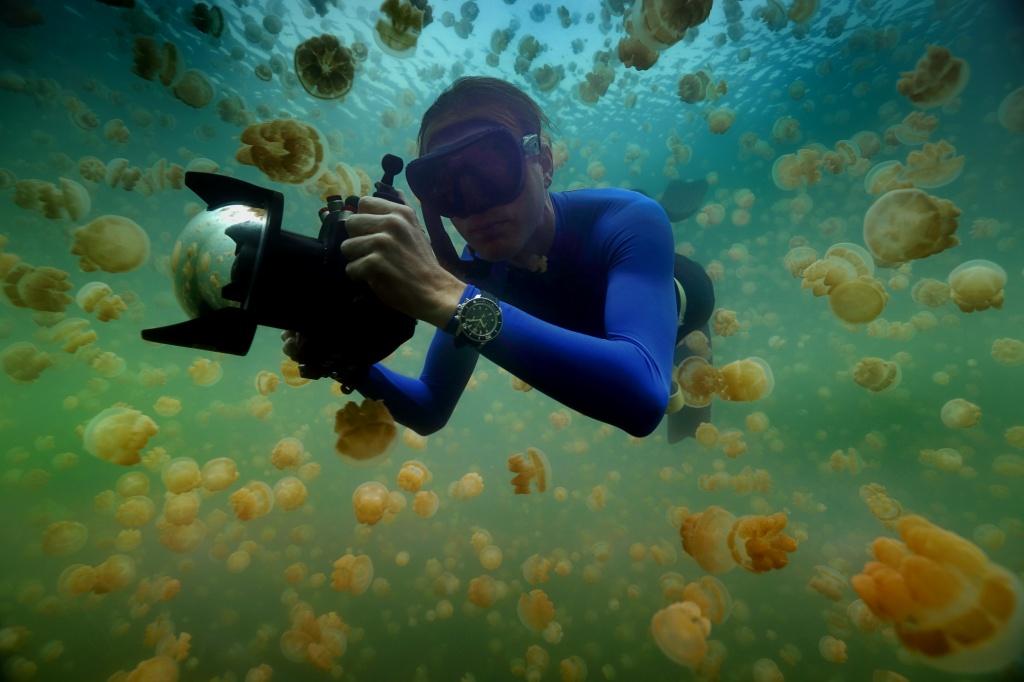 國家地理探險家enric Sala博士在帛琉