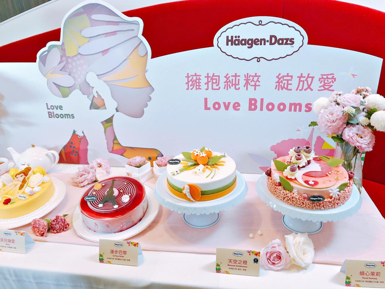 Häagen Dazs Cake